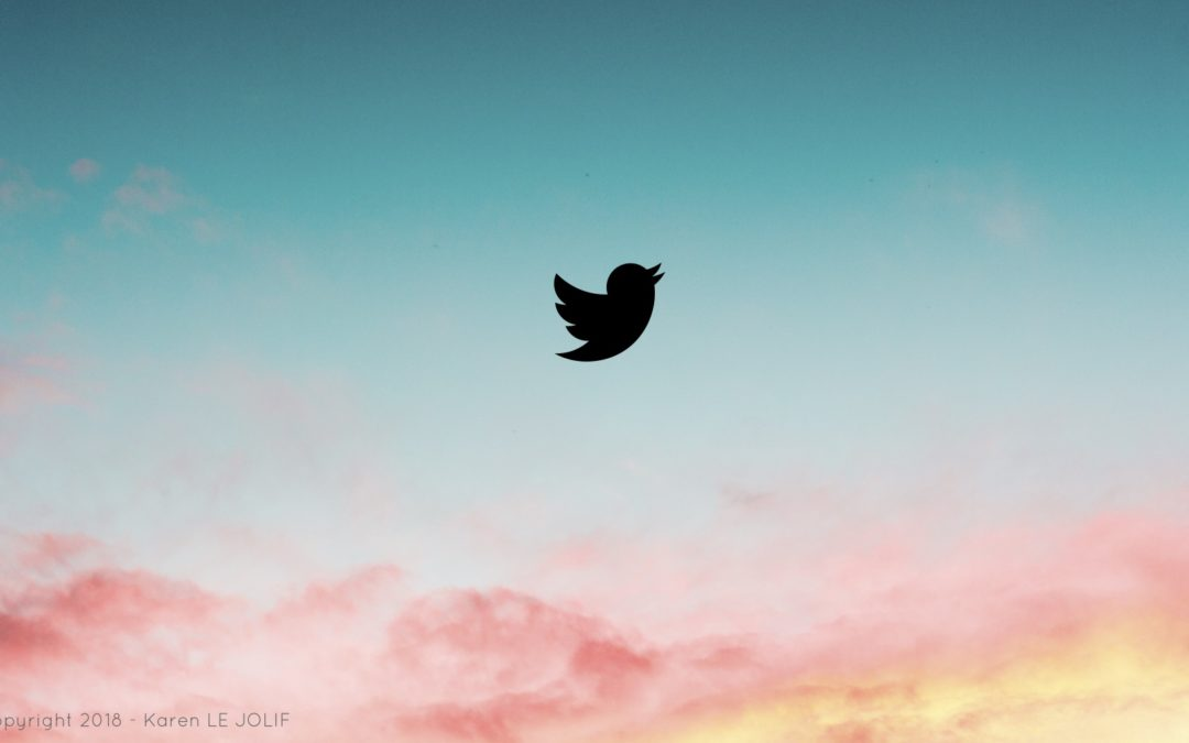 Et si Twitter vous offrait bien plus que quelques gazouillis…